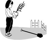 image planting tree