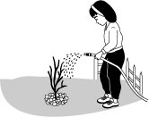 image of planting a tree