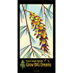 From small seeds, grow big dreams poster