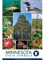 Minnesota State Symbols poster