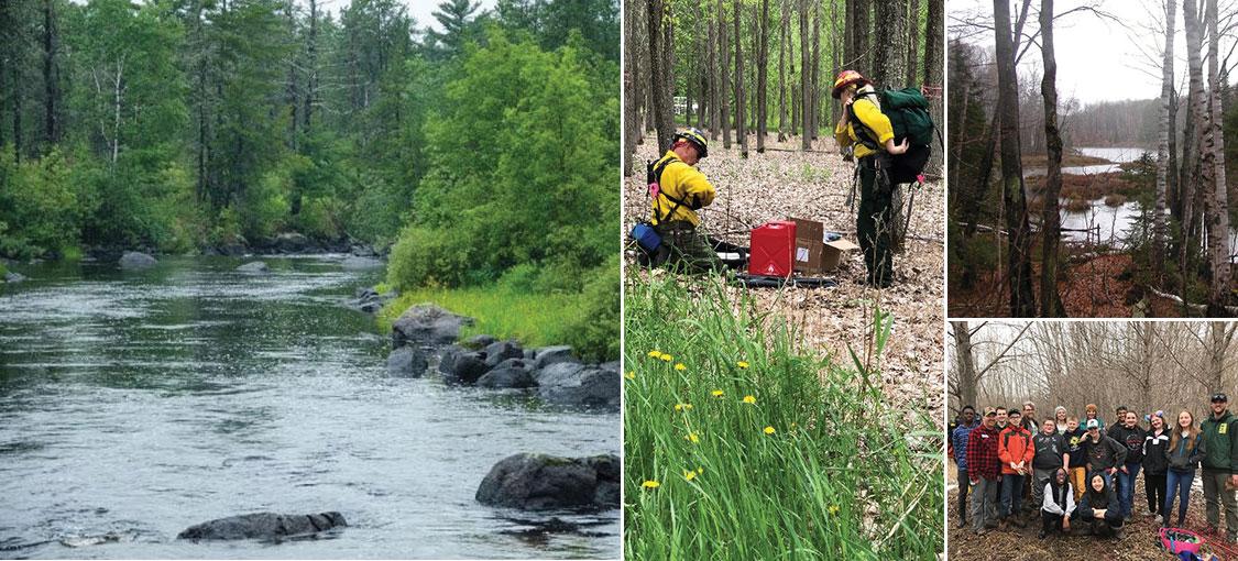 DNR forester and landowner walking in landowner's woodlands