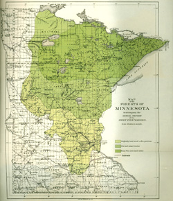 image: Map showing where the forest are in Minnesota