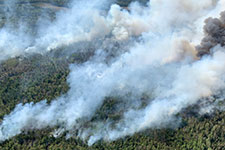 aerial view of forest fire showing billowing white smoke.