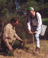 photo of two peple planting a seedling