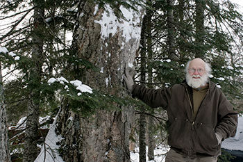 image of Dennis Chilcote standing be a pine tree