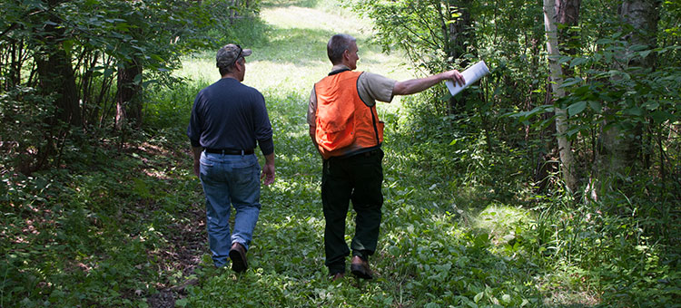 DNR forester and landowner walking in landowner's woodlands