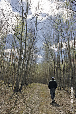 photo of landowner walking in the woods