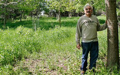 Ken Nichols standing by a tree in a clearing with tree seedlings