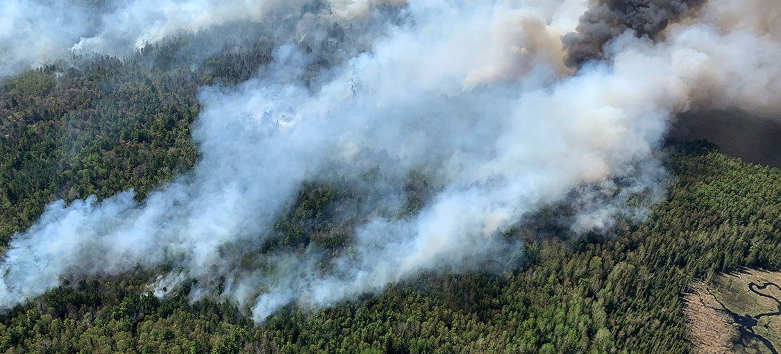 aerial of smoke from several fires in pine trees.