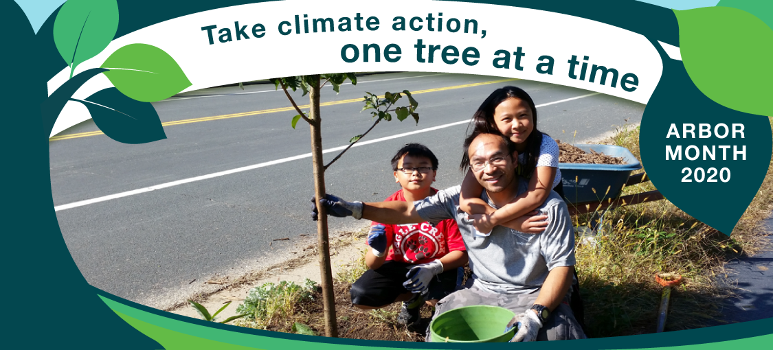 Take climate action one tree at a time. Arbor Month 2020