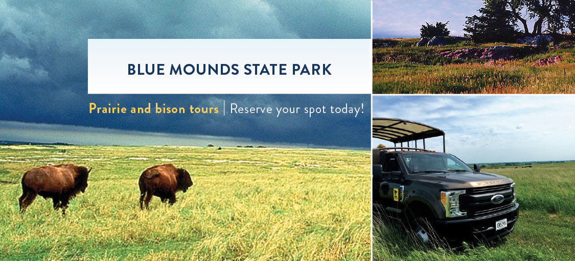 Reserve your spot now for a prairie or bison tour at Blue Mounds State Park. Photos of bison and the tour truck.