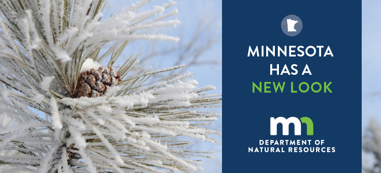 Minnesota has a new logo. learn about the new DNR logo