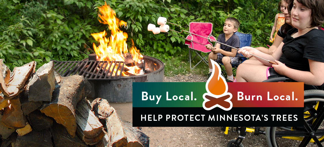 Firewood. Buy Local. Burn Local. Help protect Minnesota's trees. Photo of kids roasting marchmallows over a fire pit alongside a stack of firewood.