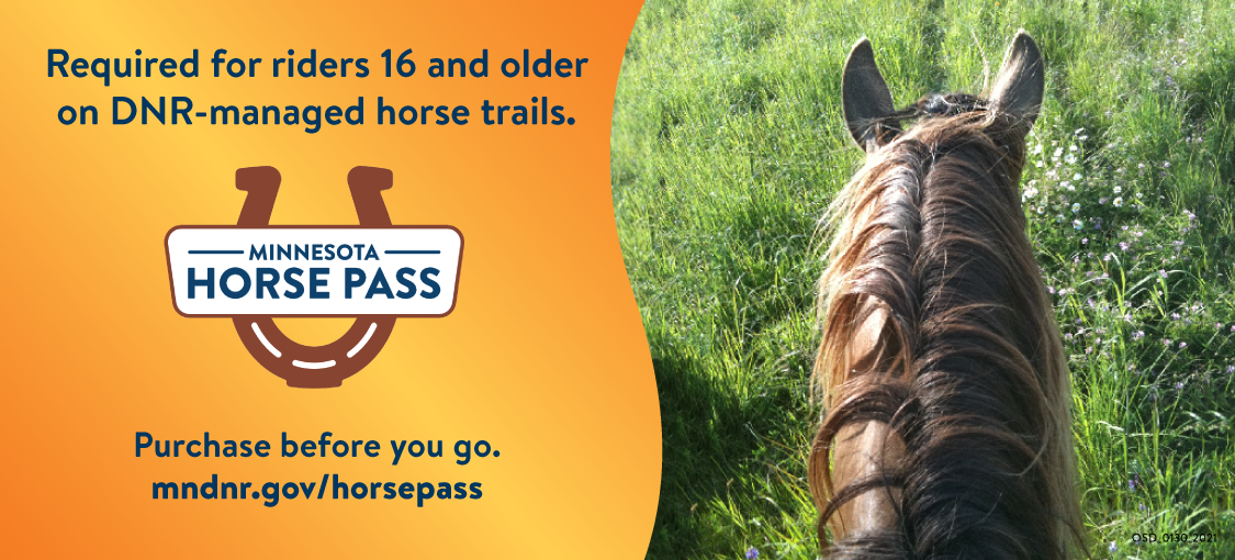 Required for riders 16 and older on DNR-managerd horse trails. Minnesota Horse Pass. Purchase before you go. mndr.gov/horsepass