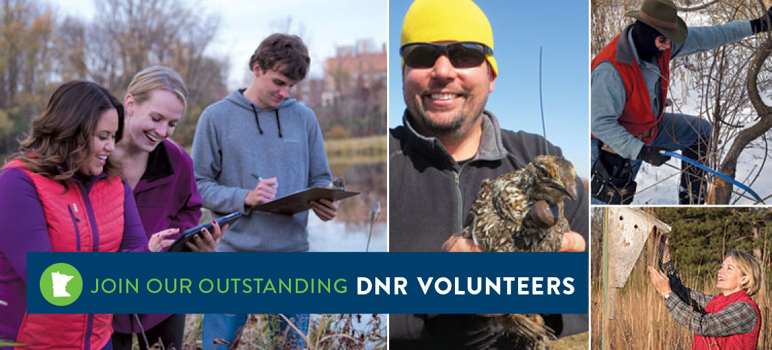 Volunteer with the DNR