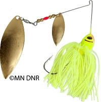 photo of a spinnerbait lure, chartreuse in color with two brass blades