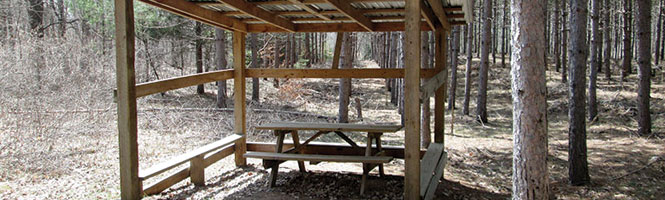 photo of a learning center in Frazee School Forest