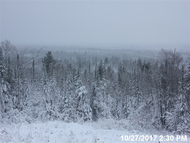 Snowy October scene from U.S. Forest Service webcam
