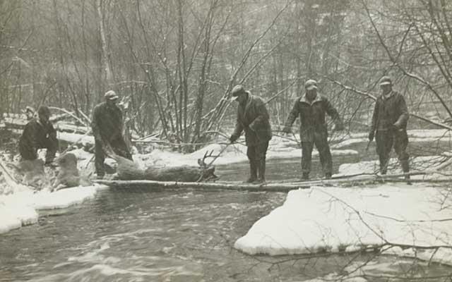 Deer Hunt - 1933