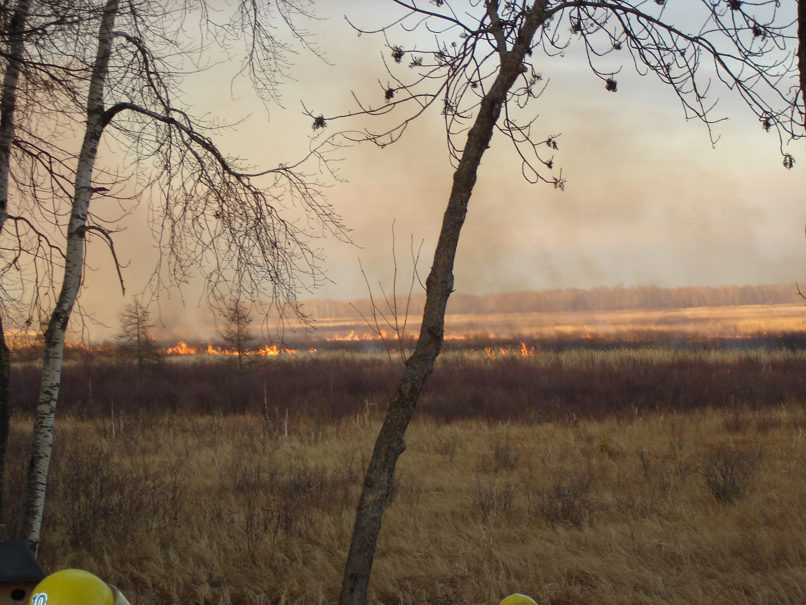 A hundred acre cattail fire by Steamboat Bay at Leech Lake on January 17, 2007.