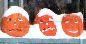 Pumpkins in the 1991 Halloween Blizzard