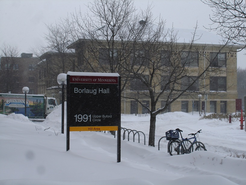 A Snowy Scene at the UofM St. Paul Campus