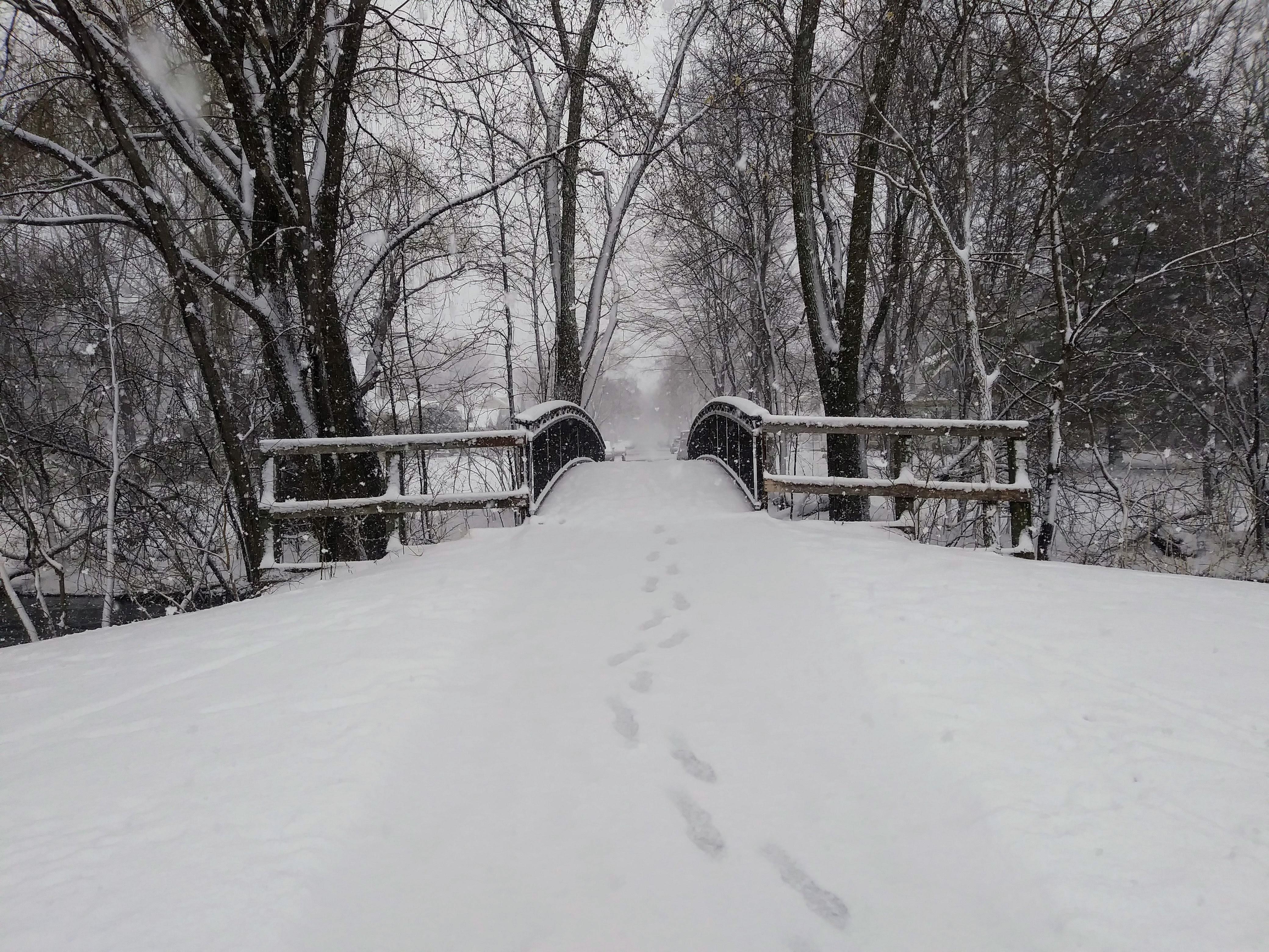 snowy on bridge