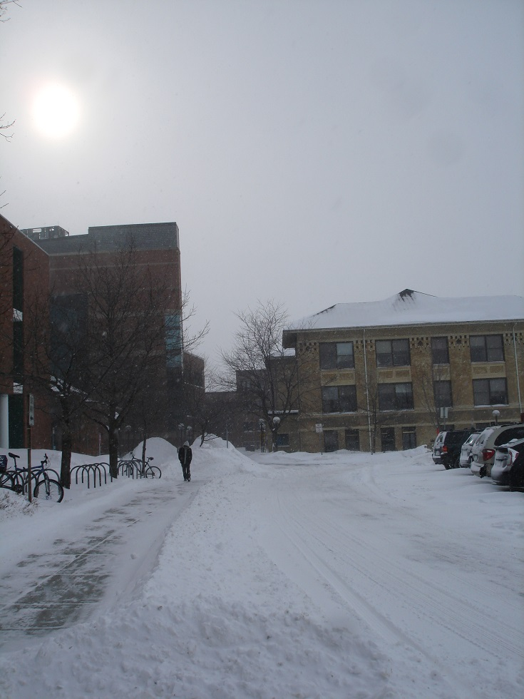 Winter Scene: January 2014 at the U of M St. Paul Campus