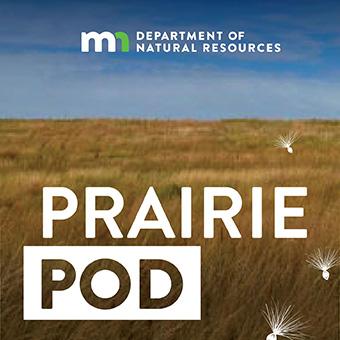 view of tallgrass prairie - Podcast logo