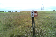A Native Prairie Bank Easement sign marks the border of a remnant prairie (a prairie that has never been broken by a plow or other means) on private land in southern Minnesota.