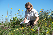 USFWS' Biologist, Sara Vacek, uses the grassland monitoring protocol to assess a native hillside prairie in southwest Minnesota