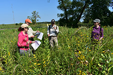Scientists and land managers discuss the evaluation of a prairie reconstruction in Minnesota