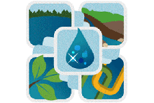 five icons for watershed health