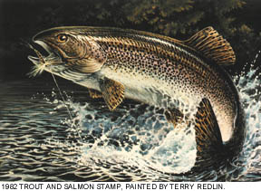 Trout and Salmon Stamp