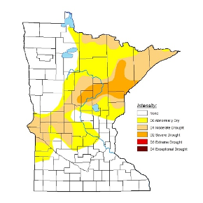 drought map of minnestoa