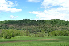 landscape view of hill side with dead areas