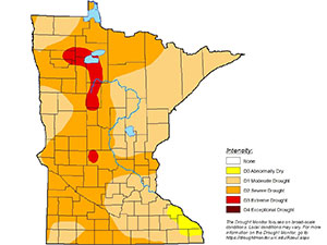map of minnesota showing 60 percent severe drought in southern and eastern parts and 40 percent abnormally dry in central and northern parts of the state.