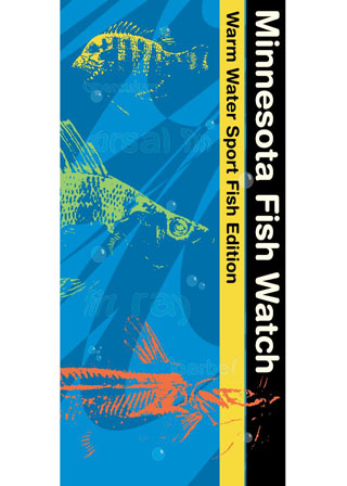MN Fish Watch Brochure