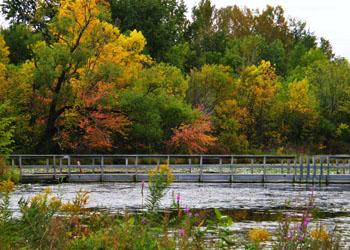 Snelling Lake