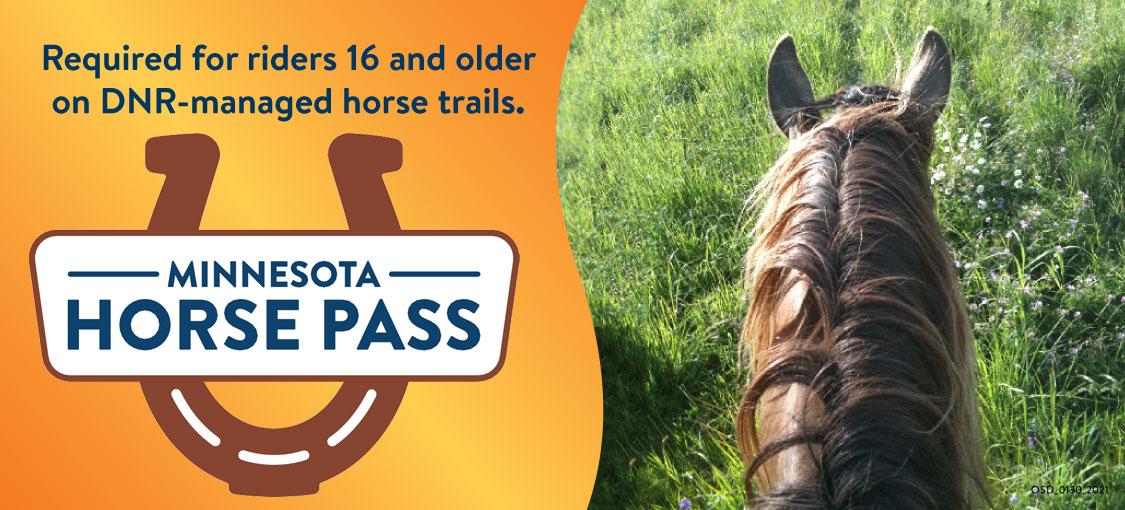 Horse pass logo