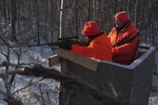 Deer hunters shooting from a tree stand