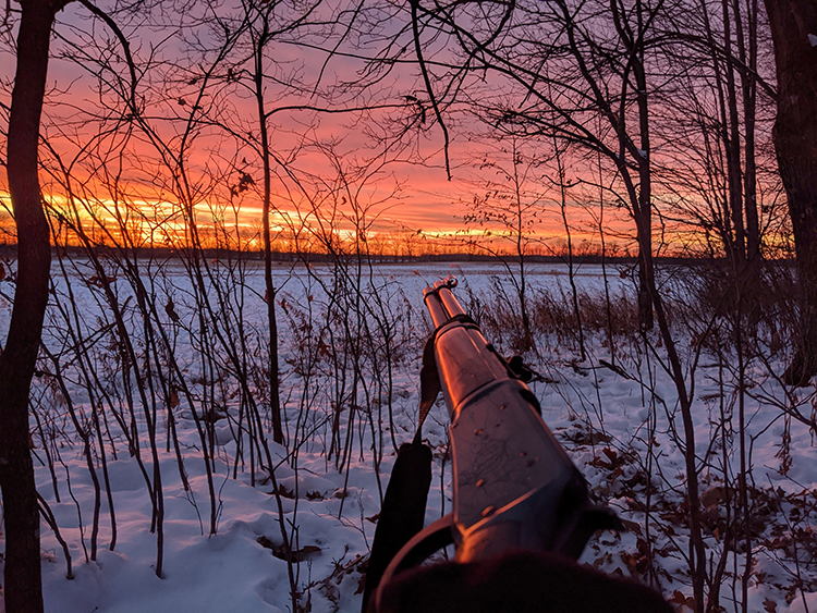 Sunrise in the woods with a rifle in the foreground