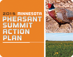 pheasant action plan button