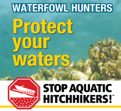 Stop the spread of aquatic invasive species