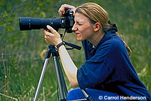 Woman viewing wildlife through a spotting scope