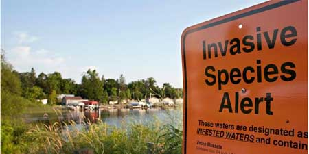 Invasive Species Alert sign