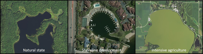 lakes in three states: natural, shoreline development, intensive agricultural