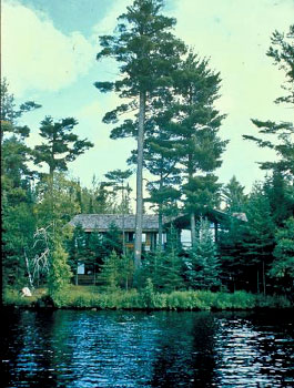 View of home from lake showing trees infront of the home screening it from view.