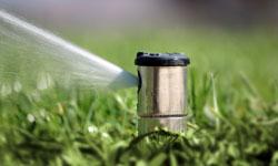 close up of a lawn irrigation spigot