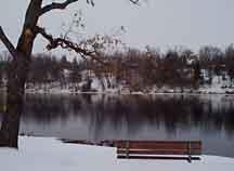 Ellison Park in winter